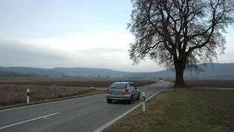 Das riskante Manöver fand auf der Kantonsstrasse zwischen Würenlingen und Tegerfelden statt. (Archiv)