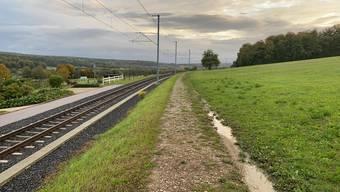 Für die bessere Erschliessung des Leimentals schlägt die Regierung statt einer neuen Bahnlinie den Ausbau der bestehenden Tramlinie vor.