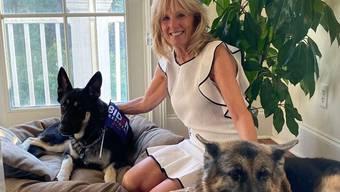 Jill Biden mit Major (links) und Champ.