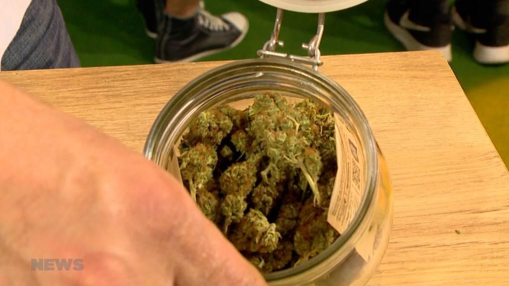 Absolutes Cannabis-Verbot nicht mehr zeitgemäss?