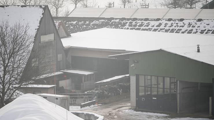 Einer der Höfe im Luzerner Hinterland, auf dem im Dezember mehrere Rinder beschlagnahmt wurden. (Archivbild)