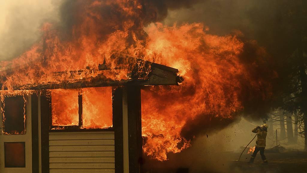 Sechs Feuerwehrleute bei Einsatz gegen Buschfeuer verunfallt