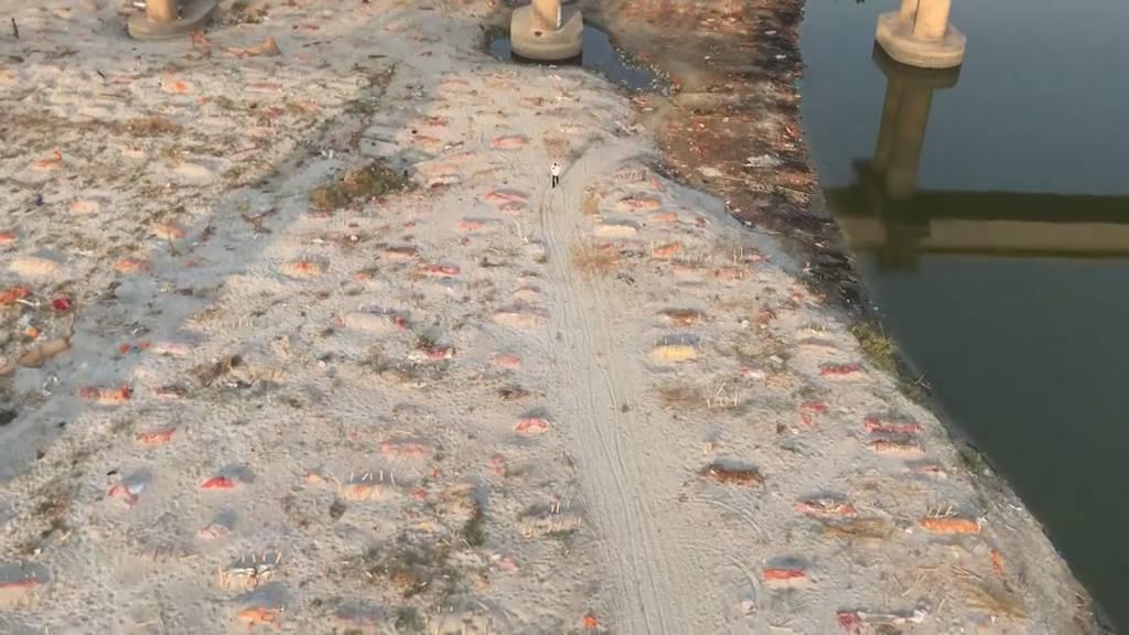 Hunderte Gräber am Ufer des Ganges