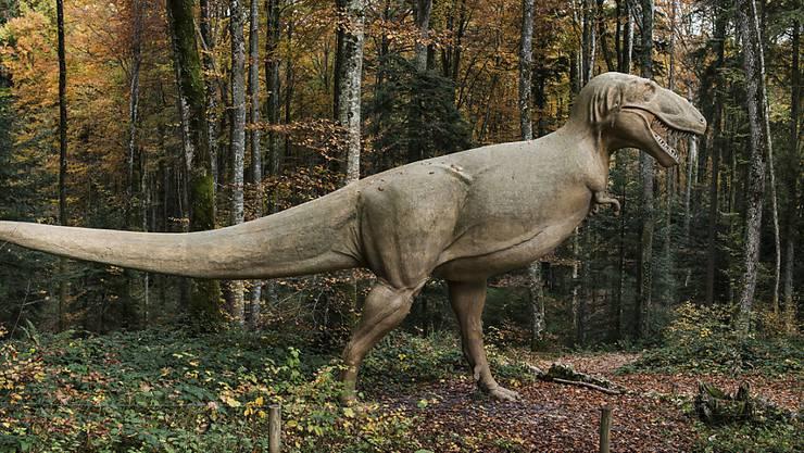 Ähnlich wie Tyrannosaurus rex dürfte sich auch Jurabrontes fortbewegt haben. Das Modell steht im prähistorischen Park von Reclere im Kanton Jura. (Archivbild)