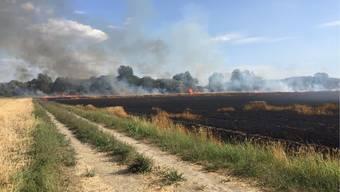 Auf einer Fläche von rund zwei Hektaren verbrannte  der Weizen vollständig.