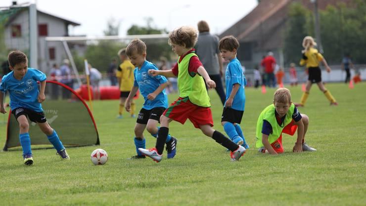 Die G-Junioren absolvierten an ihrem Spielfest 14 Stationen und traten gegen Bälle aller Art – auch gegen Handbälle.