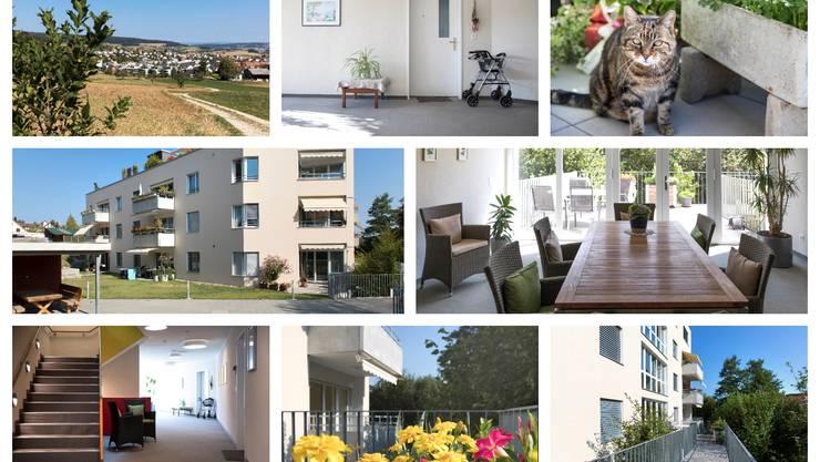 www.wohnenimalter-ehrendingen.ch