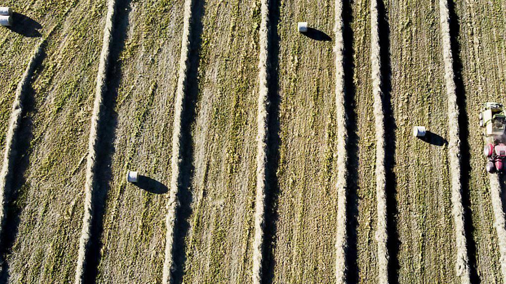 Schweizer Bauern sollen in den nächsten Jahren gleich viel Geld erhalten wie heute. Das schlägt der Bundesrat vor. (Archivbild)