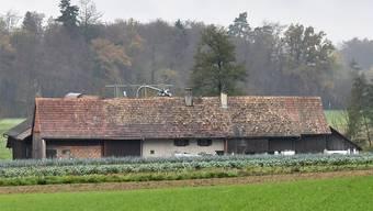 Auf diesem Bauernhof in Boningen lebten die Kühe. (Archiv)