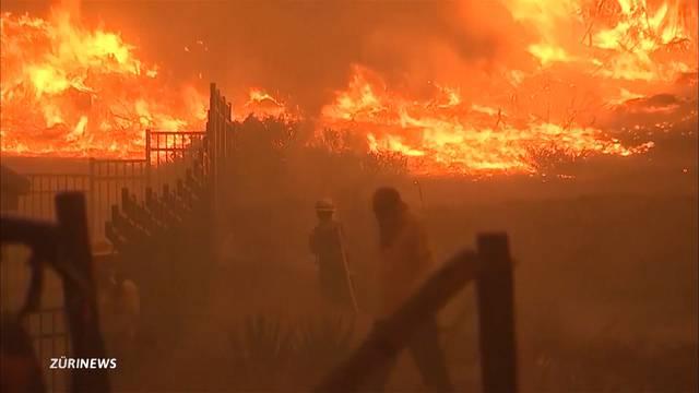 Waldbrände in Kalifornien wüten weiter