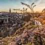 Der Hauptstadt brechen die Steuereinnahmen weg. Darum kündigt Berns Stadtregierung für das laufende Jahr ein Millionen-Sparpaket an.