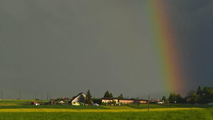 Regenbogen bei Hallwil am Sonntagabend