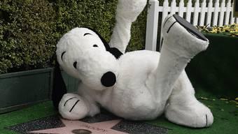 Snoopy mit seinem Stern: Die Zeichentrick-Figur ist nun auch auf dem Walk of Fame verewigt.