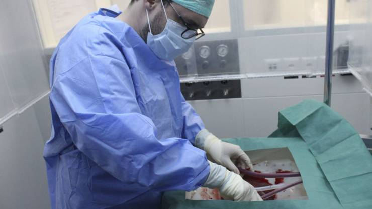 Ein Chirurg schliesst eine Leber an die neue Perfusionsmaschine an, die sie eine Woche am Leben erhalten kann.