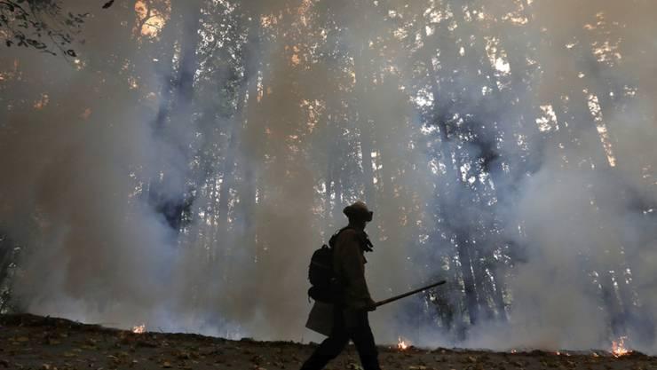 Ein Feuerwehrmann geht am Rande eines Gegenfeuers, welches die Brände in einem Waldgebiet unter Kontrolle bringen soll. Foto: Shmuel Thler/The Santa Cruz Sentinel/dpa