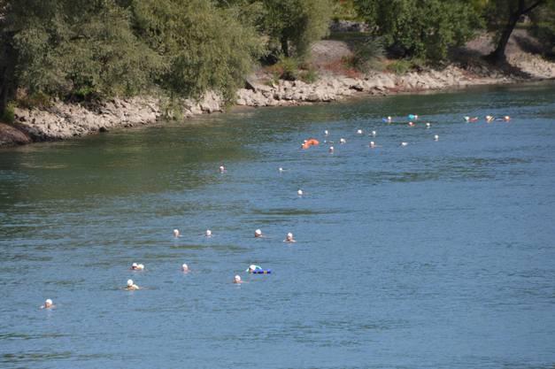 Impressionen Zweibrückenschwimmen zwischen Bad Säckingen und Mumpf.