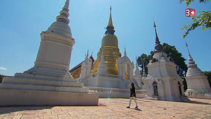Bachelor Patric erwarte die Ladies in Chiang Mai.