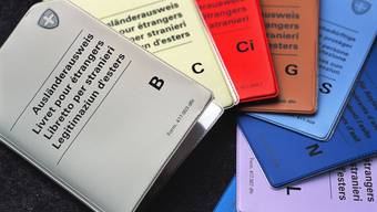 Ausländerausweise: Nach biometrischen Pässen und biometrischen Identitätskarten werden auch biometrische Ausländerausweise eingeführt.