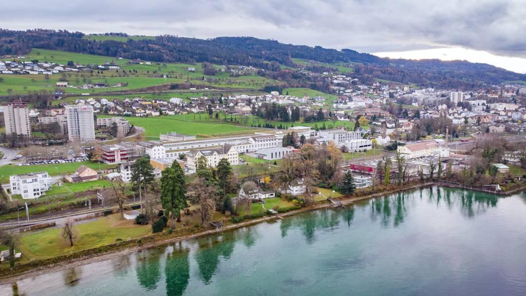 Die Ufermauer und der felsige Seegrund sollen durch die Revitalisierung neue Lebensräume erhalten.