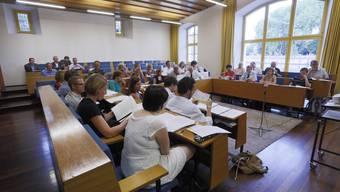 """Einen verkleinerten Gemeinderat sieht das """"Ja""""-Komitee nicht als Lösungsansatz."""
