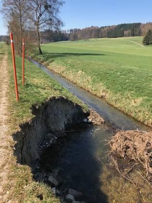 Das beschädigte Ufer am Bibernbach in Lüterkofen.