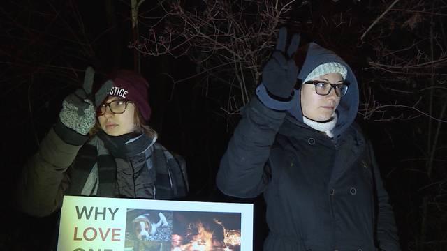 Tierschutz-Demo in Thun: Friedlich immer noch zu teuer?