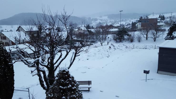Schneepracht in Arboldswil (BL)