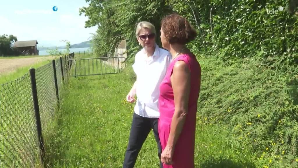 Stadt Zug sucht Ideen für Oeschwiese