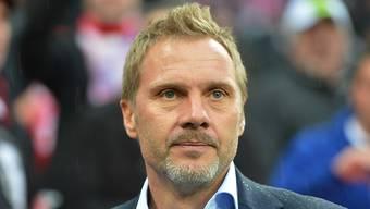Könnte von Austria Wien zum FCB zurückkehren: Thorsten Fink. (Archiv)