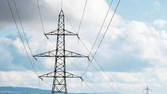 Die umstrittene Stromleitung führt am Dorfrand von Niederwil über mehrere Liegenschaften.
