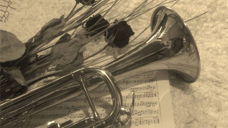 Mit einem dringlichen Appell sucht die Musikgesellschaft Sarmenstorf neue Mitglieder. Wenn sie keine findet, muss sie sich auflösen.