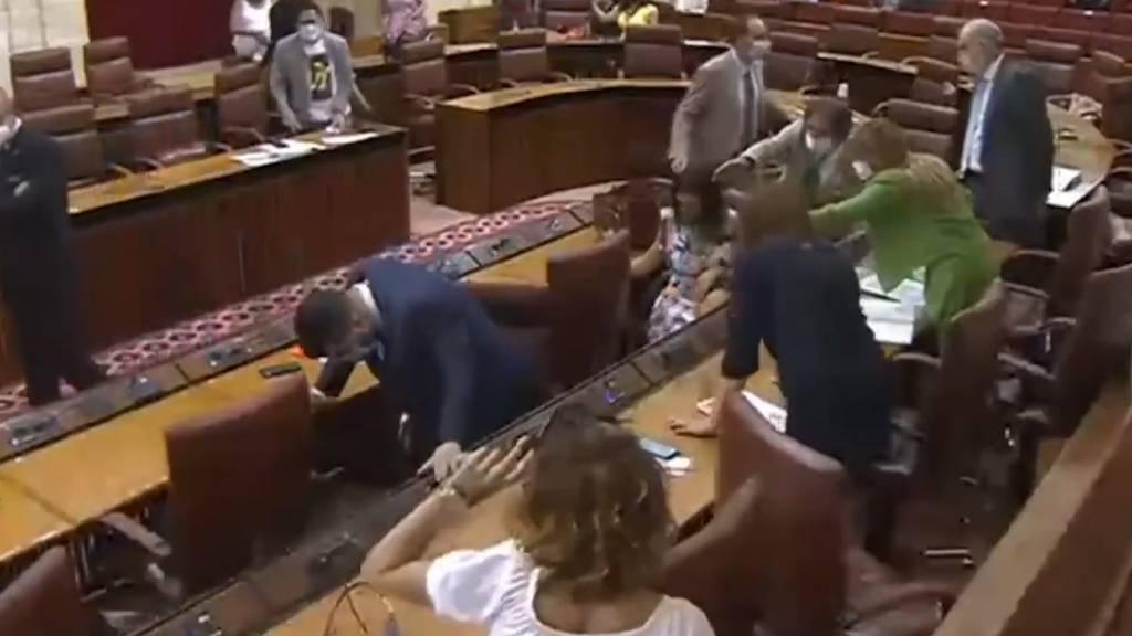 Ratte unterbricht spanische Parlamentssitzung