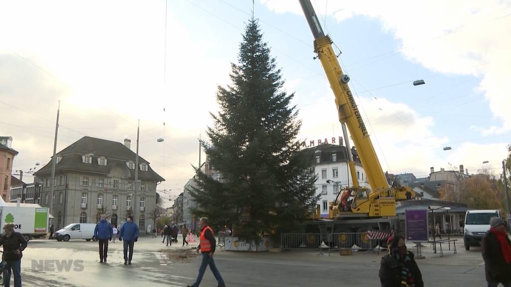 Bieler Weihnachtsbaum: So verlief der Transport aus dem Wald in die Stadt