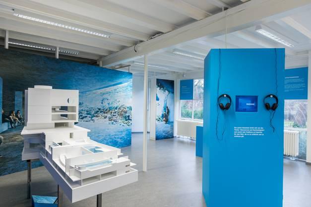 Ausstellung zur Visualisierung des Ozeaniums.