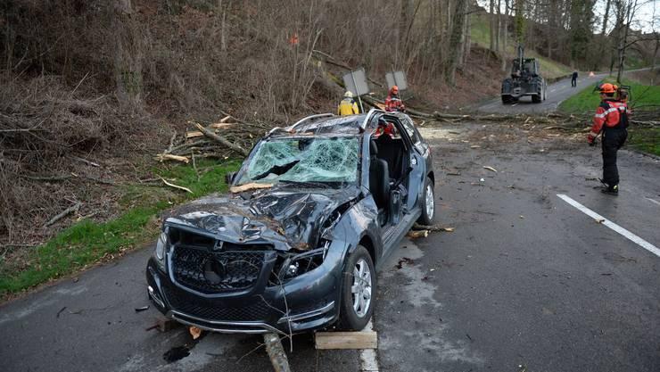 Der Lenker verstarb noch auf der Unfallstelle.
