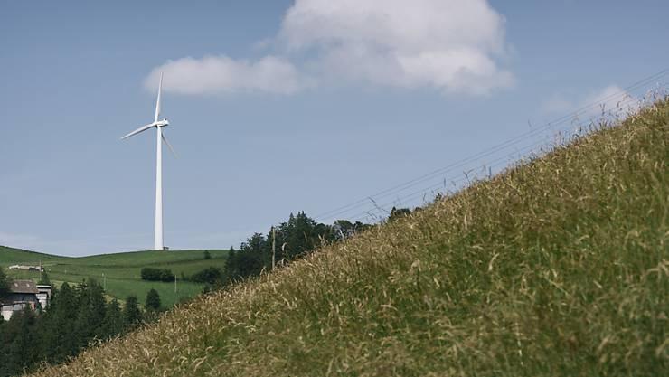 Bis zu 180 Meter hoch hätten die Windturbinen bei Court in den Himmel geragt. (Archivbild)