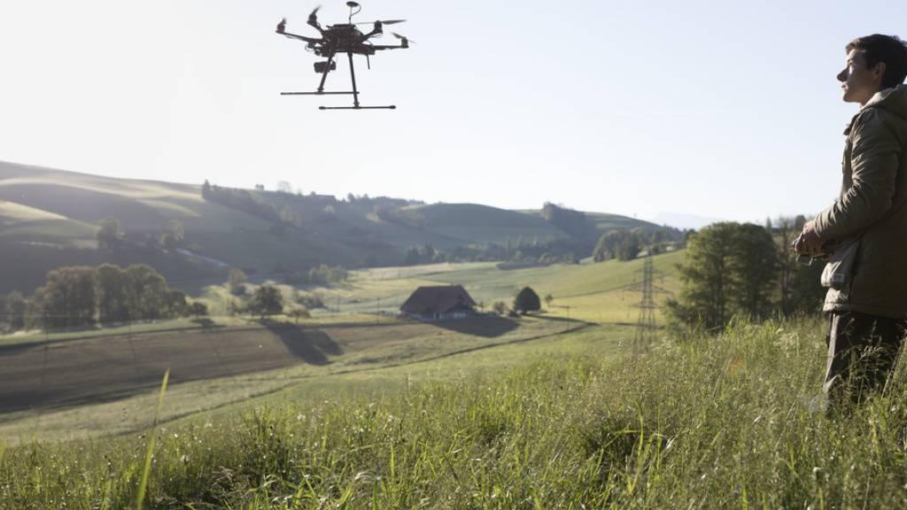 Drohne mit Wärmebildkamera spürt Rehkitze auf, um sie vor dem Mähdrescher zu retten. Auf die Tiere lauert aber auch eine längerfristige Gefahr: Wegen dem Klimawandel kommt der Frühling zu früh, so dass zum Geburtstermin der Rehe die Zeit des optimalen Nahrungsangebots schon vorüber ist. (Archivbild)