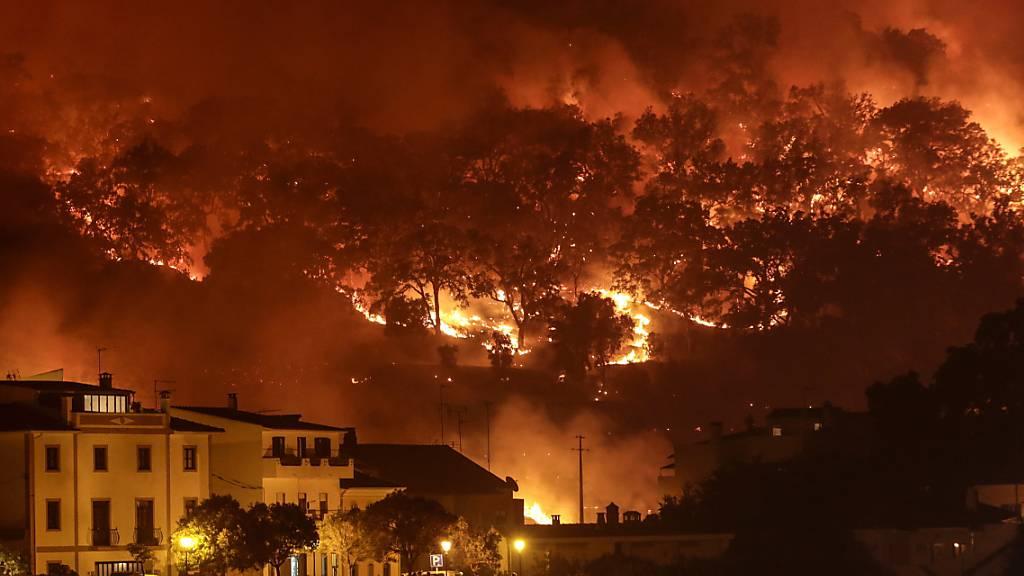 Feuerwehrmann stirbt bei Waldbrand in Zentralportugal