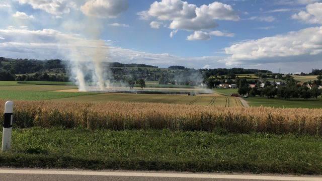In Affeltrangen brannte am Dienstag ein Gerstenfeld.