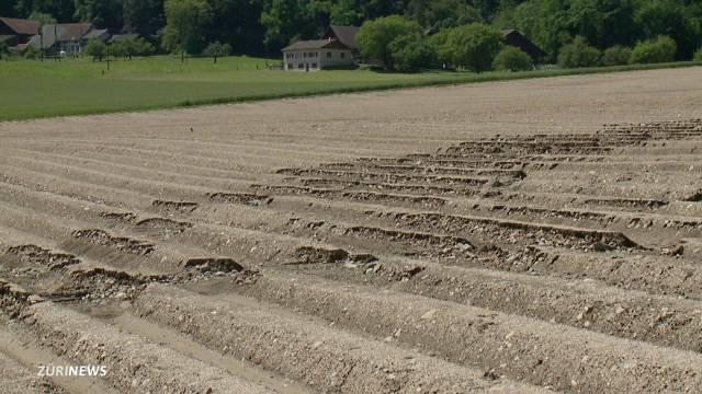 Bauern leiden unter Wassermassen