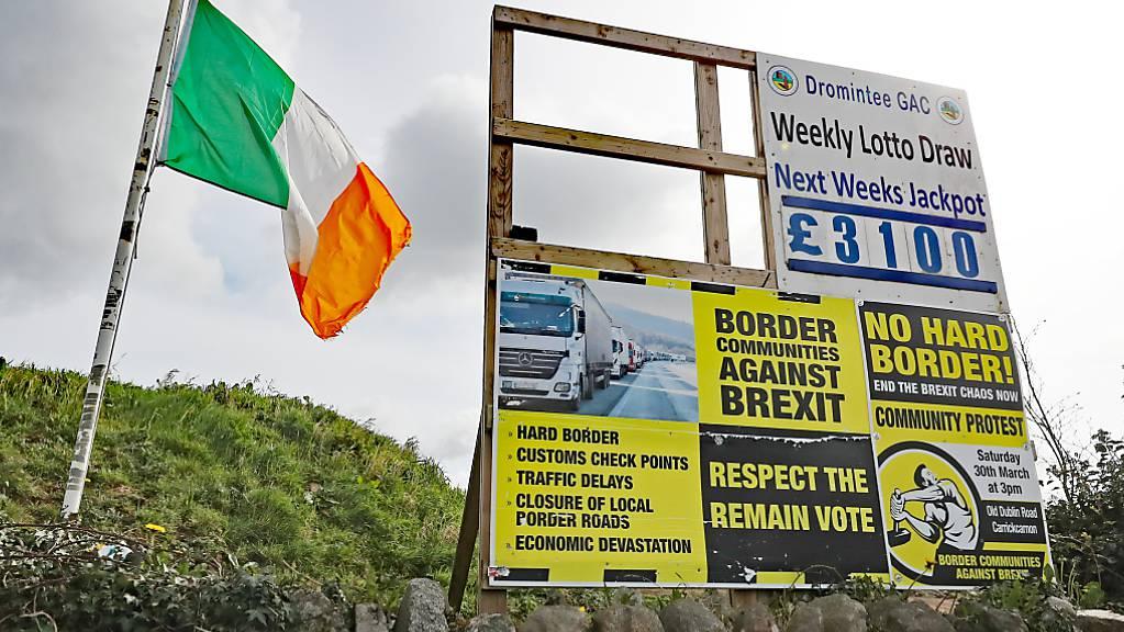 ARCHIV - Eine irische Fahne und Anti-Brexit-Schilder stehen in einem Dorf an der Grenze zwischen Dundalk in der Republik Irland und Newry in Nordirland. Foto: Niall Carson/PA Wire/dpa