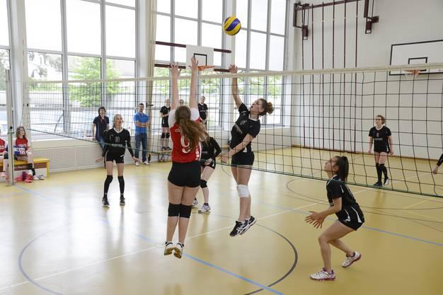 Beim Volleyballspiel wird voller Einsatz gegeben.