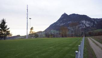 Die Mobilfunkantenne am Rand des Schulareals konnte nicht verhindert werden und bleibt in Günsberg ein Ärgernis.