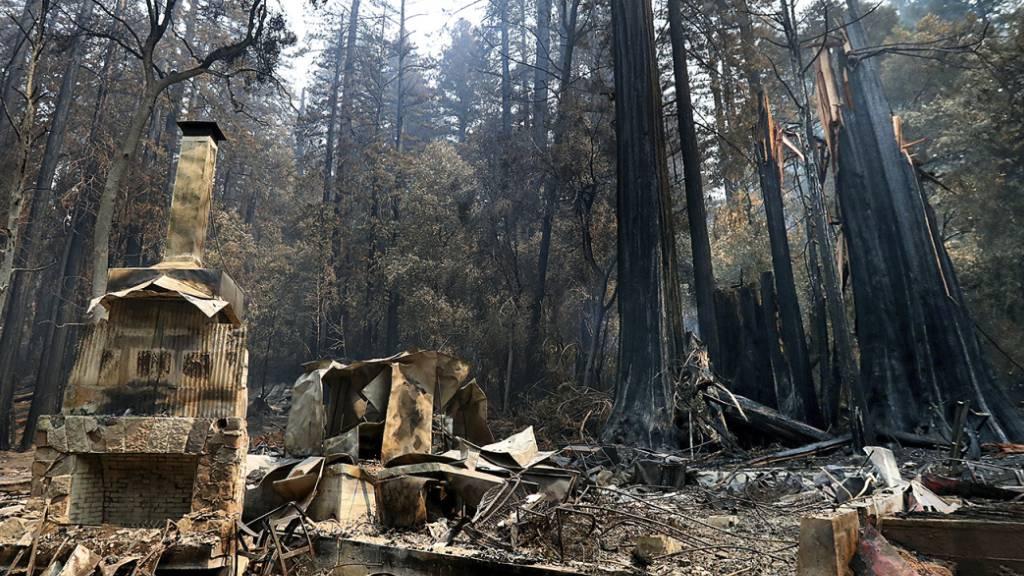 Die Feuerstelle des «Nature Lodge Museum and Store» im «Big Basin Redwoods State Park» steht umgeben von Verwüstungen durch die verheerenden Waldbrände. Foto: Shmuel Thler/The Santa Cruz Sentinel/AP/dpa