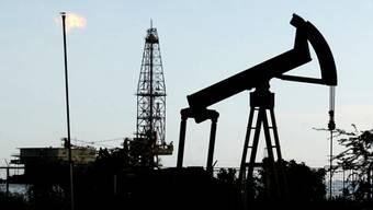Öl-Riese Shell bohrt bald in der Arktis
