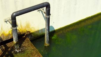 In der Schweiz werden momentan gut hundert Abwasserreinigungsanlagen mit einer vierten Reinigungsstufe ausgerüstet, um Mikroverunreinigungen effektiv zu entfernen. (Symbolbild)