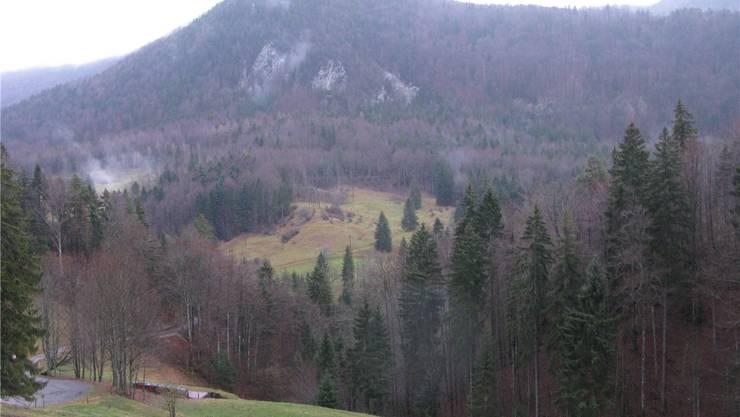 Der Dilitsch: Heute bezeichnet der Name eine Felsformation (Bildmitte) in Gänsbrunnen, in der steilen bewaldeten Flanke nordwestlich des Hinteren Weissensteins.