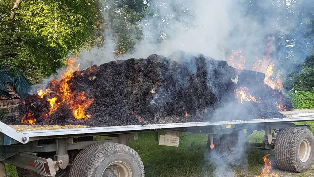 Siloballen und Asthaufen in Brand: Polizei sucht Zeugen