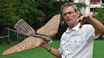 Entwickler Marcel Maurer mit dem künstlichen Falken «Robird».
