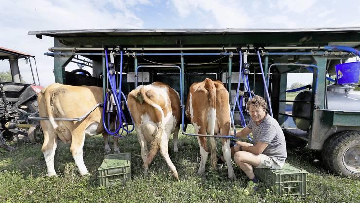Daniel Maag fährt mit seiner mobilen Maschine direkt aufs Feld und kann die Kühe so vor Ort melken.